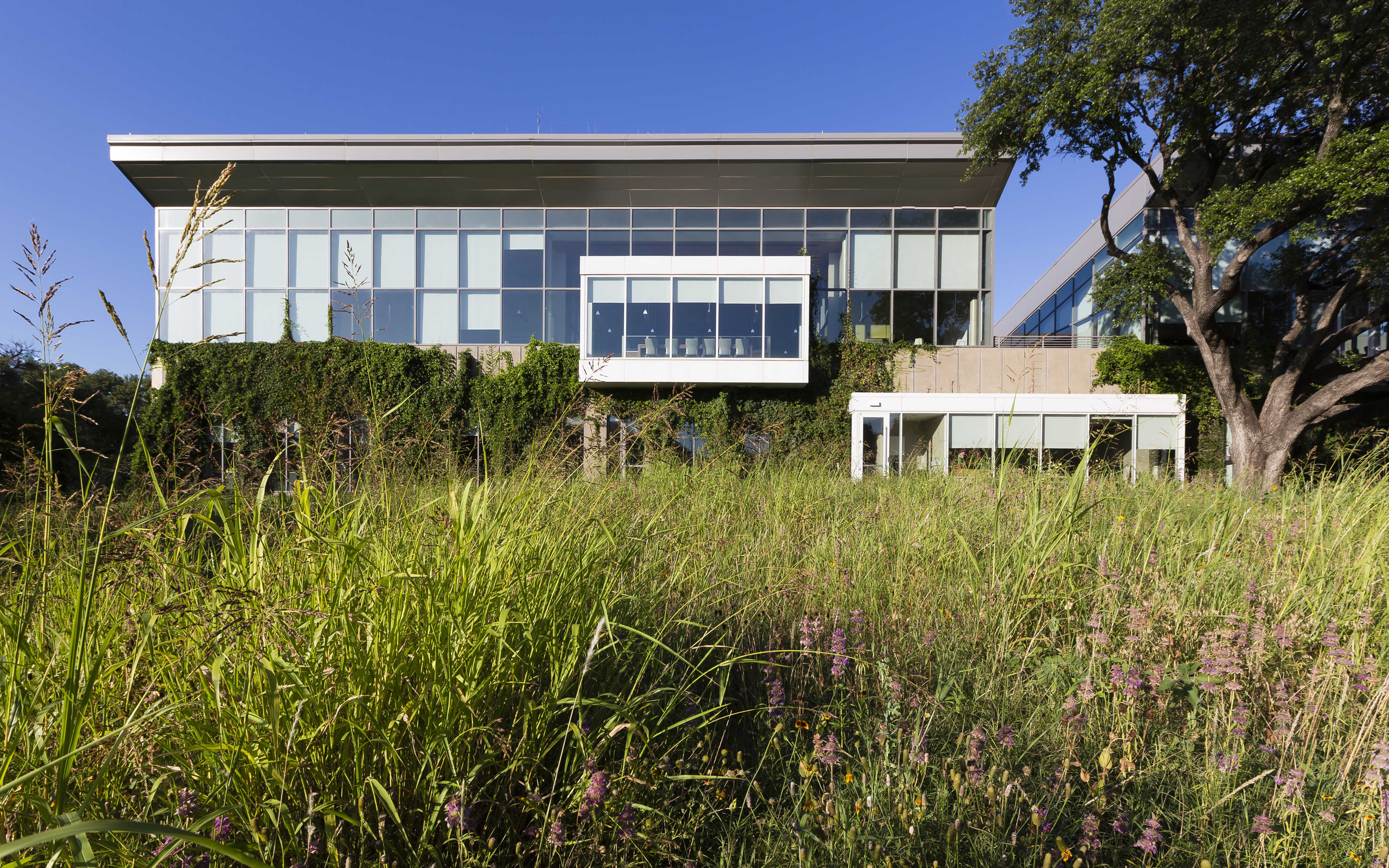 Sustainable architecture and building design issues for Architectural design issues