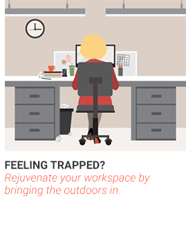 Feeling Trapped? Rejuvenate your workspace by bringing the outdoors in.